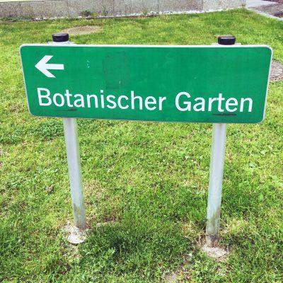 Botanischer Garten moonstone