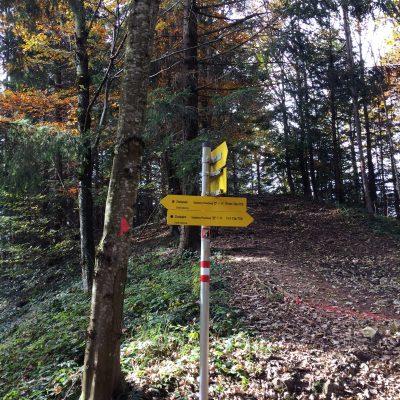 Gaisberg Rundwanderweg moonstone