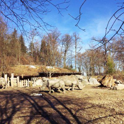 Zoo Salzburg Hellbrunn