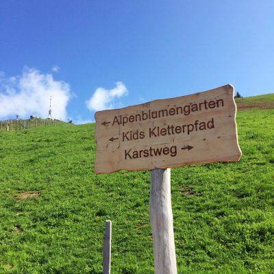 Kitzbüheler Horn, GoWithTheFlo