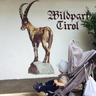Wildpark Aurach bei Kitzbühel, GoWithTheFlo
