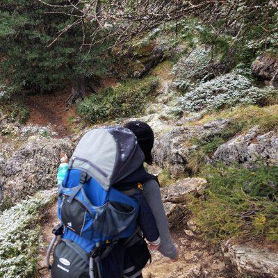 Ciampinoi Südtirol,, GoWithTheFlo19 moonstone