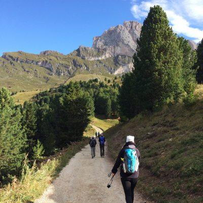 Col Raiser Südtirol, GoWithTheFlo8 moonstone