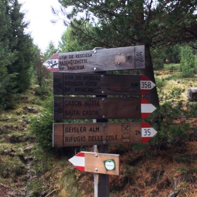 Resciesa, Südtirol, GoWithTheFlo14 moonstone