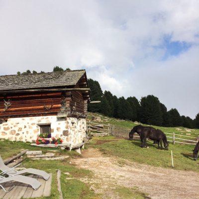 Resciesa, Südtirol, GoWithTheFlo17 moonstone