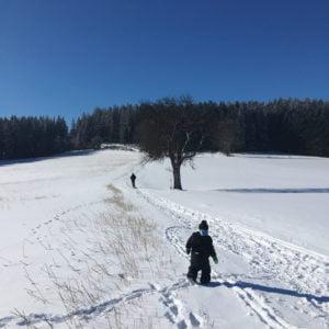 Oberneukirchner Berg, GoWithTheFlo10