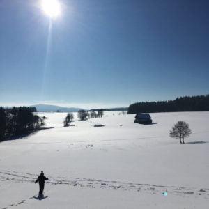 Oberneukirchner Berg, GoWithTheFlo7