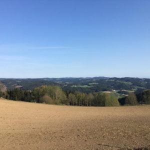 Gipfelkreuz Königswiesen, GoWithTheFlo6