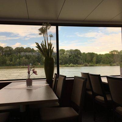Hafenrundfahrt Linz, GoWithTheFlo11