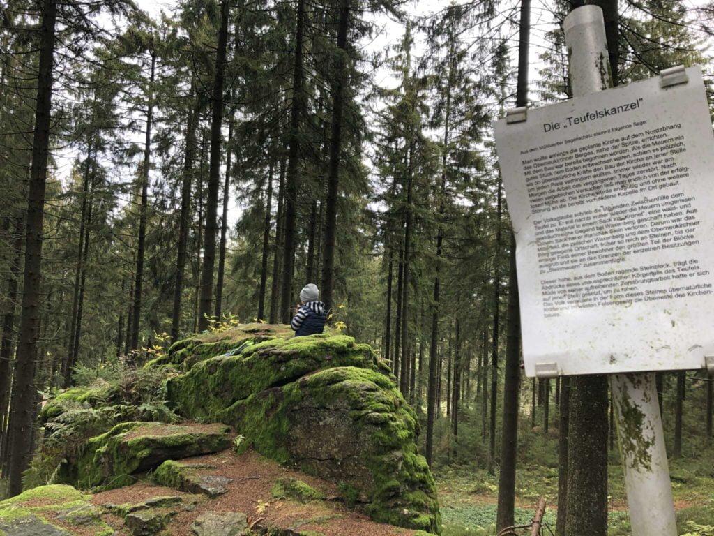 Herbstliche Abenteuerwanderung am Oberneukirchner Berg